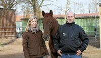 CAV Stall Scout 03_2014 Aktivstall Heinrichshof Andrea und Michael Frenger 1
