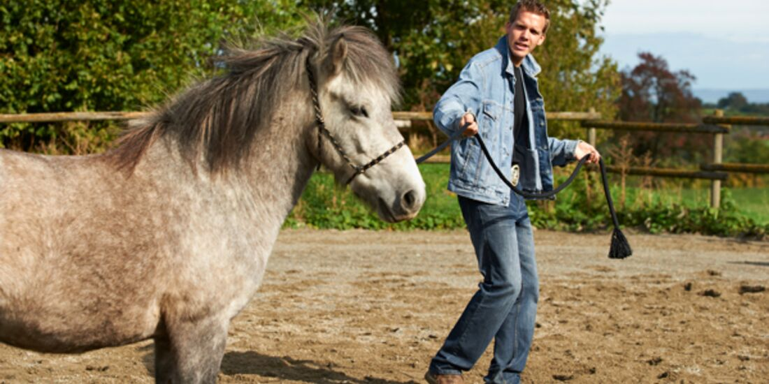 CAV Stimmung Horsemanship Florian Oberparleiter 2