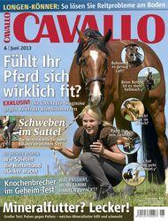 CAV Titel Cover Juni 2013