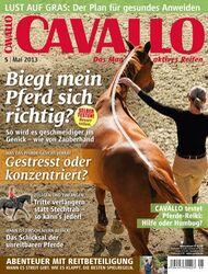 CAV Titel Cover Mai 2013