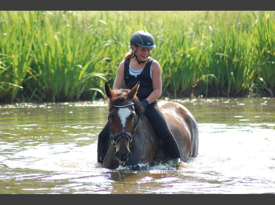 CAV Wasser Pferde Baden Leserfotos Andreas Voß