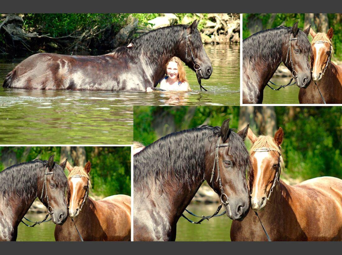CAV Wasser Pferde Baden Leserfotos Berenike Hammer