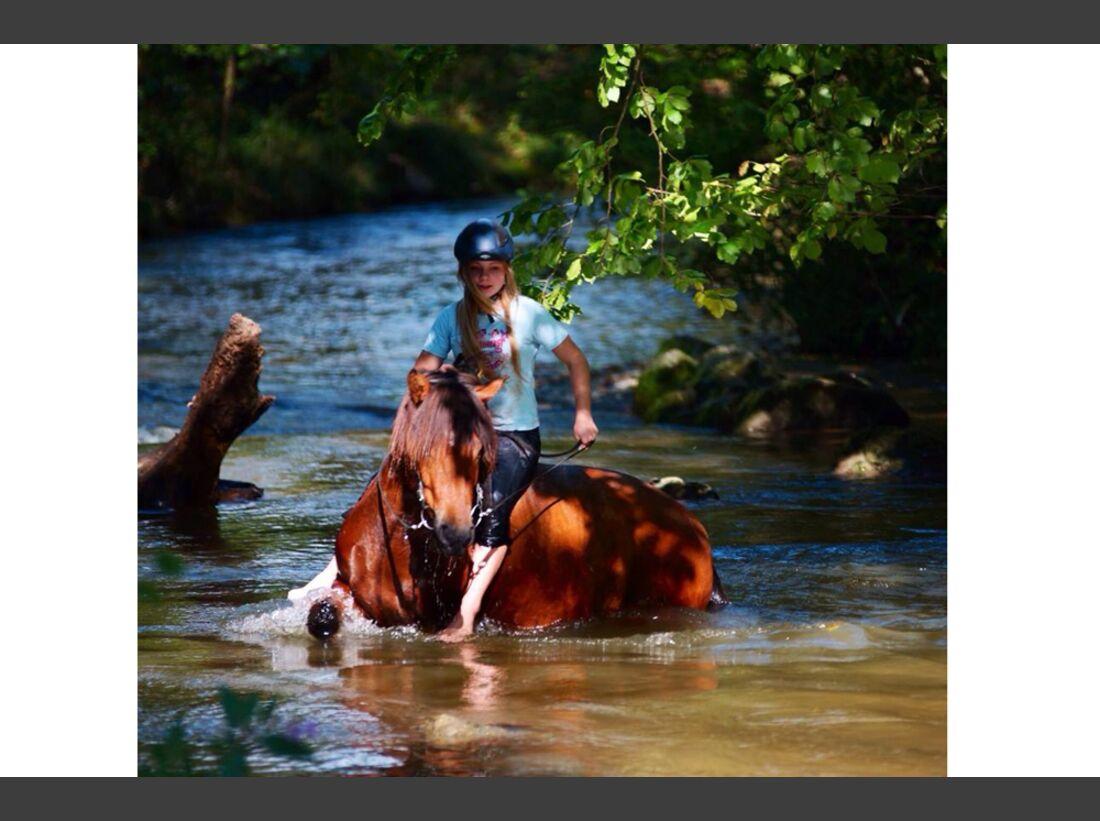 CAV Wasser Pferde Baden Leserfotos Niki