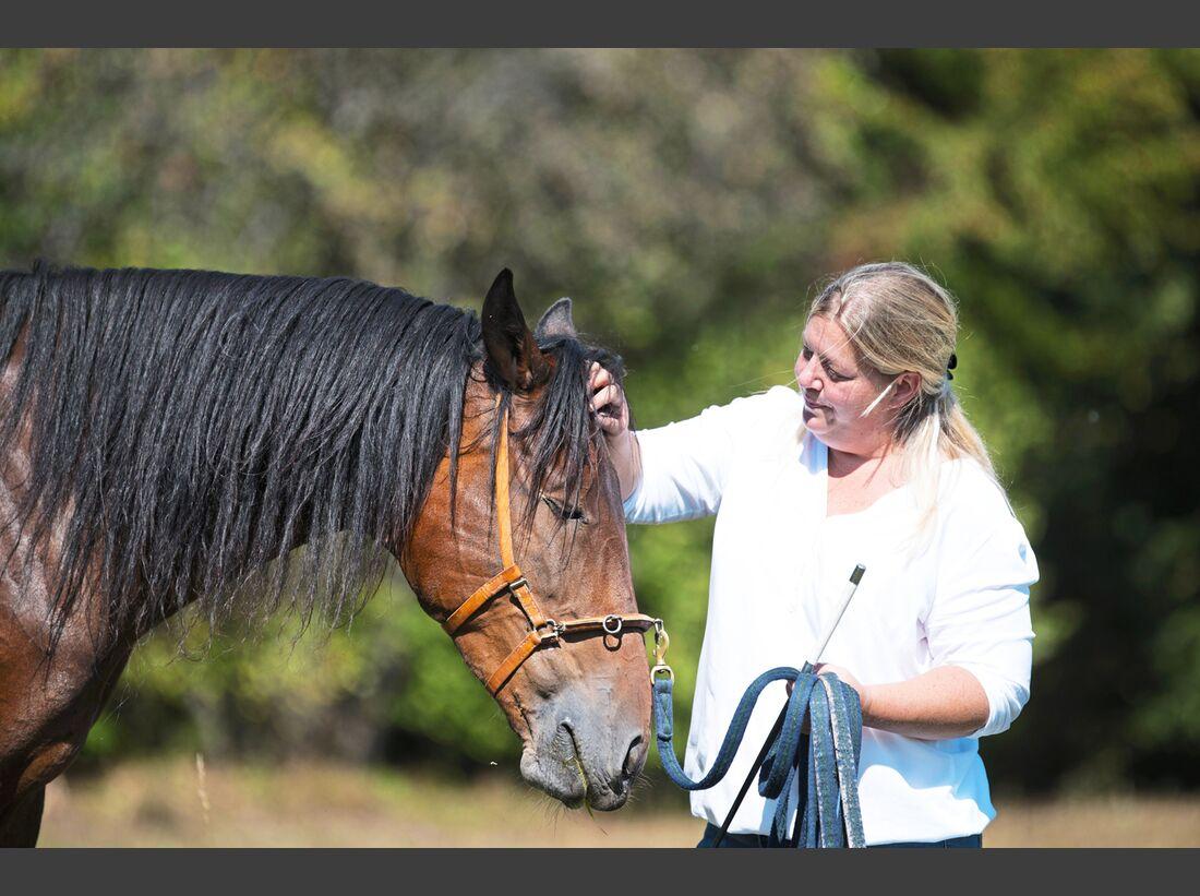 cav-201812-pferderassen-20180912-maremma-pferde-0376-hartig-v-amendo (jpg)