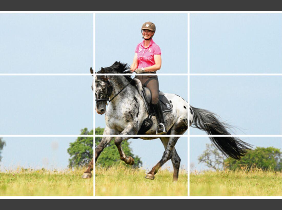 cav-pferde-fotografieren-2-lir0603-1 (jpg)