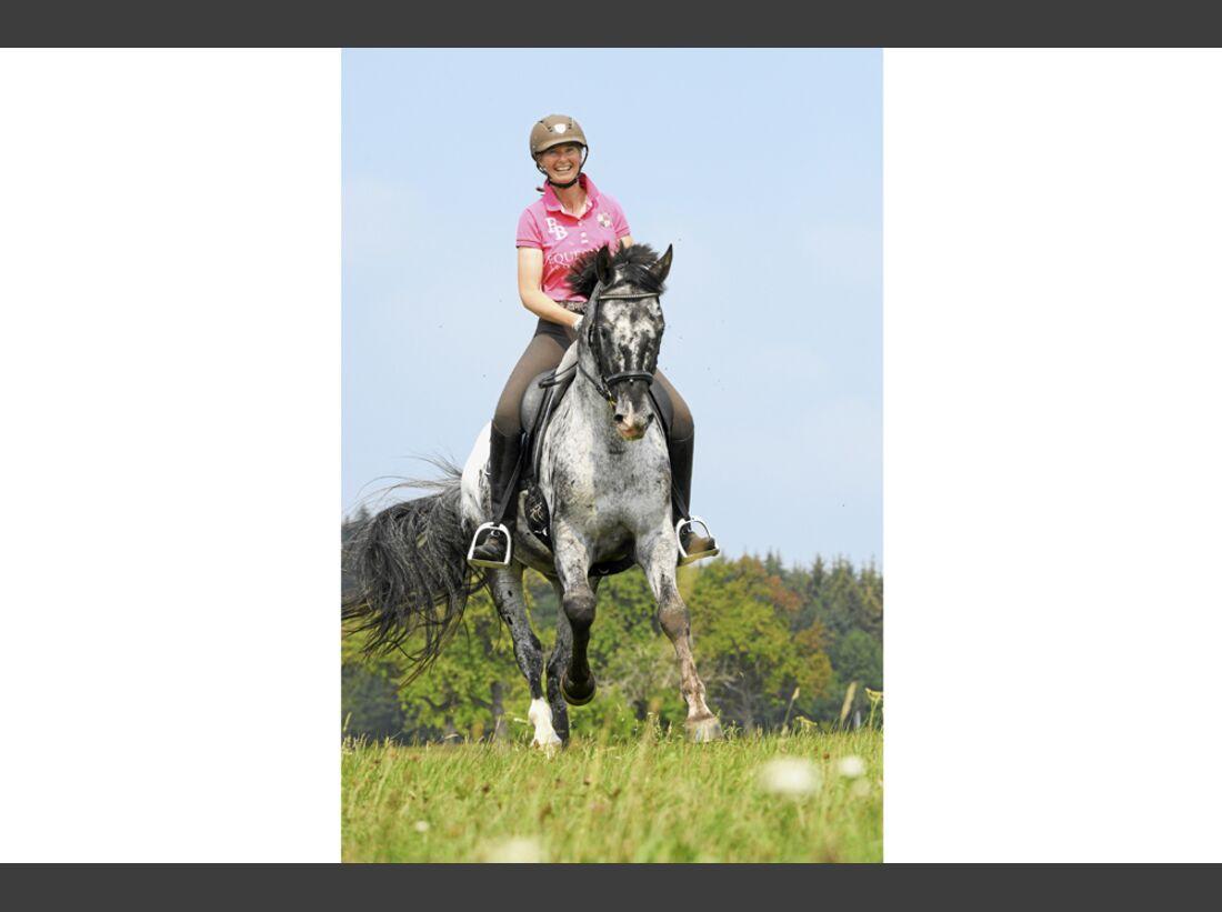 cav-pferde-fotografieren-2-lir0811 (jpg)